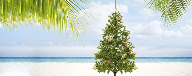 Sandra Duden aus dem BSW. Reisebüro gibt Reise-Tipps für Kurzentschlossene : Weihnachten mal anders