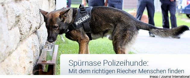 : Aus dem Leben eines Polizeihundes
